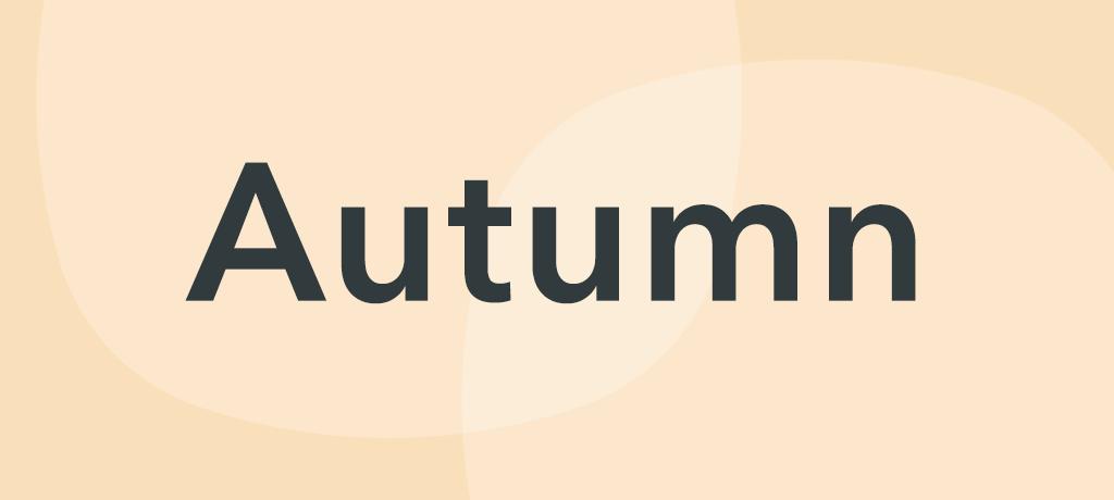 Reception: Autumn B – Room on the Broom